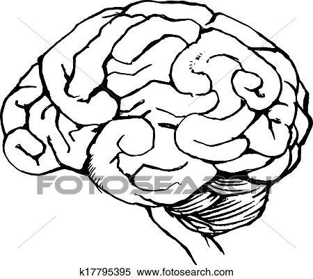clipart of human brain k17795395 search clip art illustration rh fotosearch com Cartoon Brain Thinking Cartoon Brain Thinking