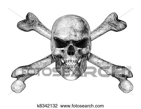 Skull Pencil Drawing Images