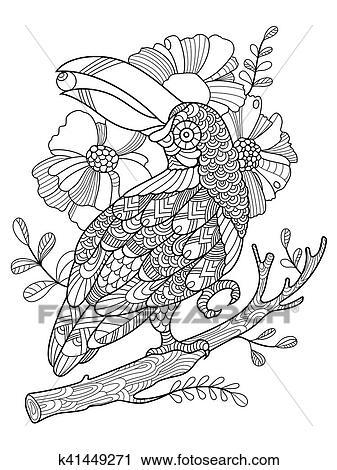 tukan, vogel, ausmalbilder, für, erwachsene, vektor clipart | k41449271 | fotosearch