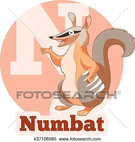 Abc Cartoon Numbat Clipart K37106585 Fotosearch