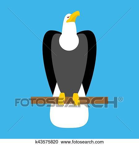 Clipart Of Bald Eagle Isolated Big Bird Symbol Of America K43575820