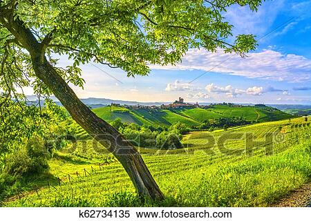 Langhe vineyards sunset panorama, Serralunga Alba, Piedmont, Italy Europe   Stock Photography