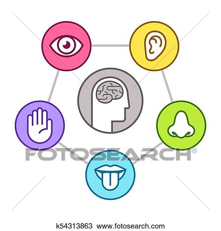 clipart of five senses of perseption k54313863 search clip art rh fotosearch com five senses clip art for kids five senses clip art for kids