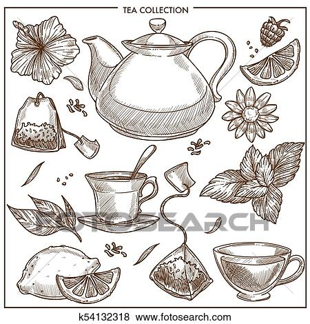 tea collection vector sketch icons of cups teapot and teabags or herbal flavorings clip art k54132318 fotosearch https www fotosearch com csp857 k54132318