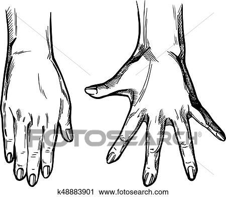 Clipart 2 mains paumes ensemble k48883901 recherchez des clip arts des illustrations - Dessin 2 mains ...