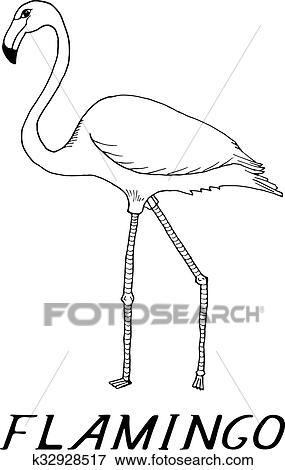 Main Dessiner Flamant Rose Style Croquis Clipart K32928517