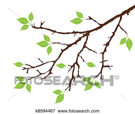 Tree Branch Clip Art K8594467