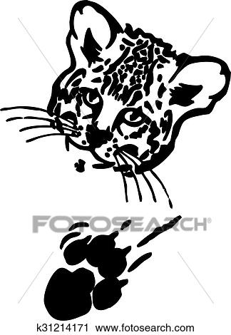 Clipart Of Leopard Puma Or Jaguar Face With Print Of Paw K31214171