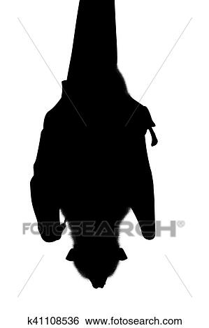 stock illustration of silhouette bat hanging k41108536 search clip