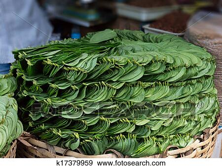 Lục Bát Hoa ĐV Stack-of-betel-leaves-piper-betle-in-stock-photo__k17379959