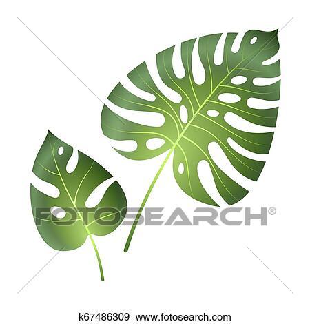 Big Green Leaves Clip Art