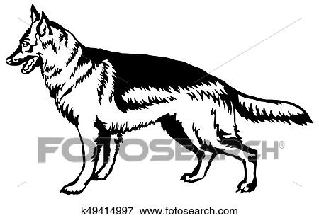 D coratif debout portrait de chien berger allemand - Dessin de chien berger allemand ...