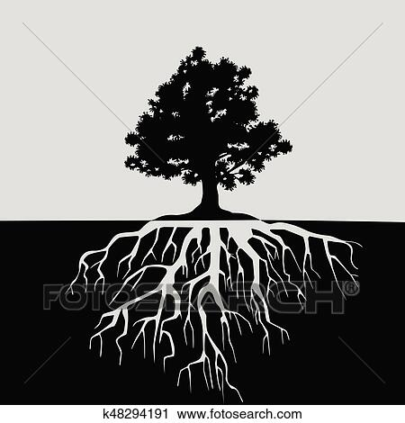 Disegni di alberi bianco e nero