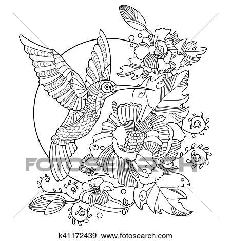 Clip Art   kolibri, ausmalbilder, für, erwachsene, vektor