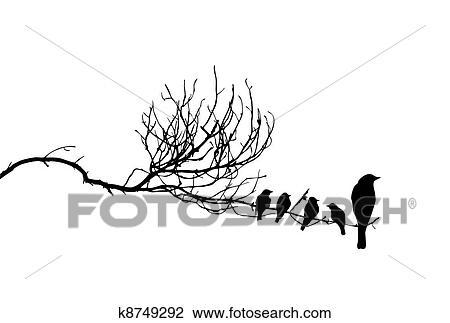 Silhouette De Les Oiseaux Sur Branche Dessin K8749292