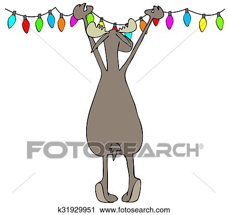 Clipart Of Moose Hanging Christmas Lights K31929951