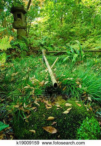 Arkivfotografi Bambus Fontene Inn Japansk Hage K19009159 Sok