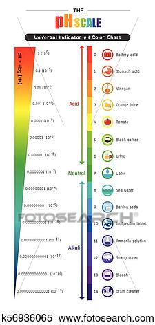 clipart of the ph scale universal indicator ph color chart diagram Acid Dissociation Constant clipart the ph scale universal indicator ph color chart diagram fotosearch search clip