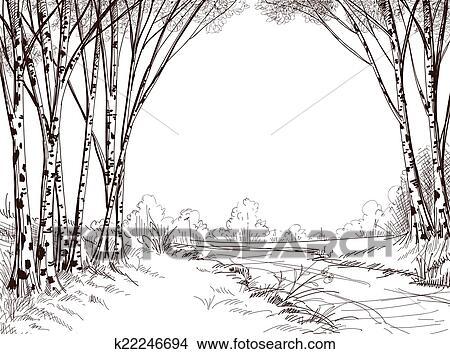 clipart birke baum wald grafik hintergrund k22246694 suche clip art illustration. Black Bedroom Furniture Sets. Home Design Ideas