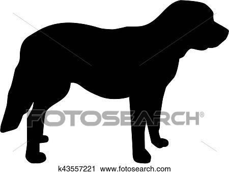 clipart of st bernard dog standing k43557221 search clip art
