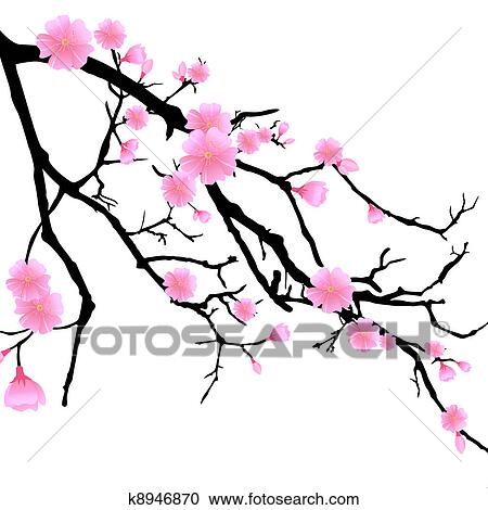 clipart of branch with cherry blossoms k8946870 search clip art rh fotosearch com cherry blossom clip art free to download cherry blossom clipart png