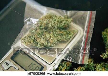 Цветы марихуаны фото зажигалка для марихуаны