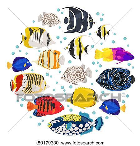 Clipart Of Freshwater Aquarium Fish Breeds Icon Set Flat Style