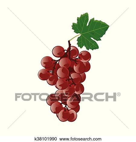 Grapes Clipart Red Grape - Red Grapes Vector Png - Free Transparent PNG  Clipart Images Download