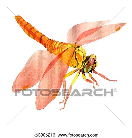 a3a374ed7a422 Exotic dragonfly wild insect in a watercolor style isolated. Full name of  the insect: dragonfly. Aquarelle wild insect for background, texture, ...