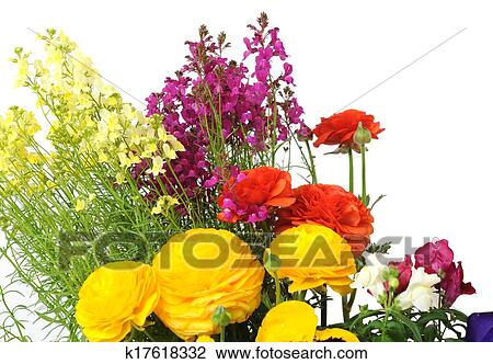 Mix of buttercup and shooting star flowers for background uses