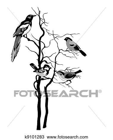 56d2ff0fd22 Fugle, silhuet, på hvide, baggrund Tegning | k9101283 | Fotosearch