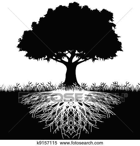 Clipart arbre racines silhouette k9157115 recherchez des clip arts des illustrations des - Arbre sans racine envahissante ...