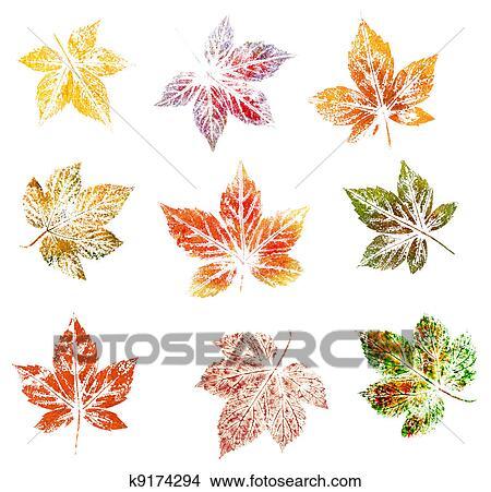 Dibujos - mora, hojas, pintura k9174294 - Buscar Clip Art ...