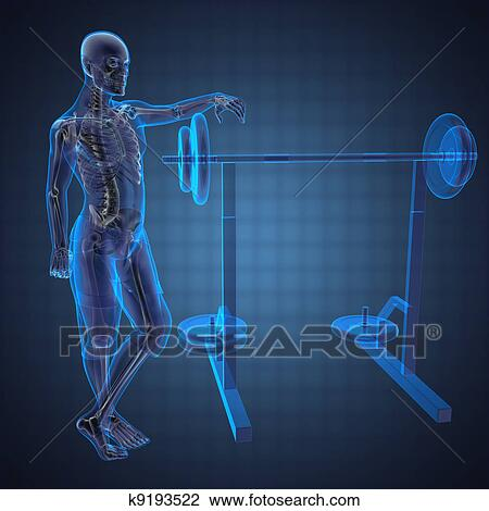 Human radiography scan in gym room drawing k fotosearch