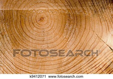 09e9bc69667 Στόκ Εικόνων - φόντο, κόβω, κορμός δέντρου, ηλικία, σήμα, closeup,