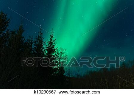 picture of aurora borealis northern lights k10290567 search