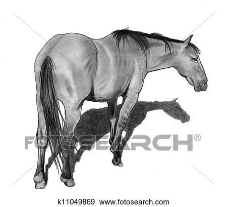 Stock Illustration Bleistift Zeichnen Von Pferd Stehen