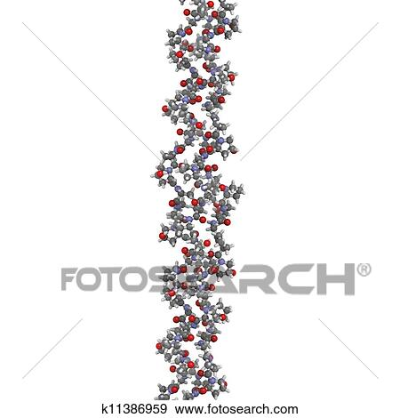 stock illustration of collagen model protein chemical structure