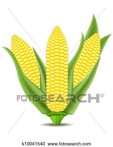 Corn Vector Illustration Clipart K10041540 Fotosearch