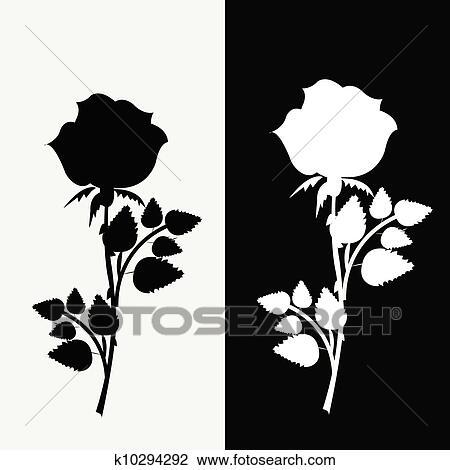 Clipart Deux Roses Noir Blanc K10294292 Recherchez Des Clip