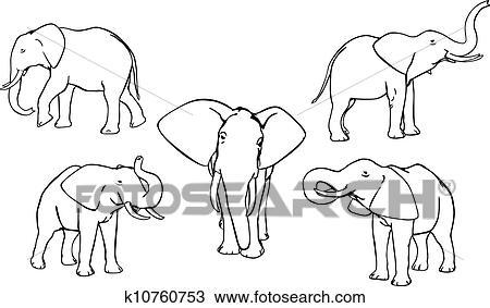 Elefanten Clipart