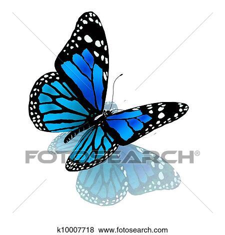 Farfalla Di Blu Colorare Su Uno Bianco Archivio Illustrazioni