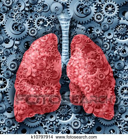 Stock Photo of Human lungs Function k10797914 - Search Stock Images ...