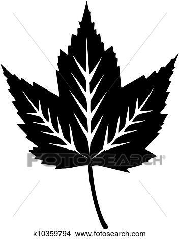Dessins feuille rable blanc d tail noir blanc k10359794 recherche de clip arts d - Feuille erable dessin ...