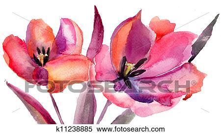 Hazır Ilüstrasyonlar Laleler çiçekler Sulu Boya Painting