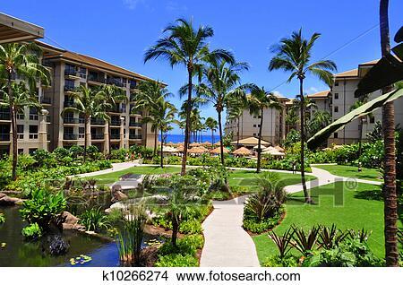 Maui Beach Resort Picture K10266274 Fotosearch