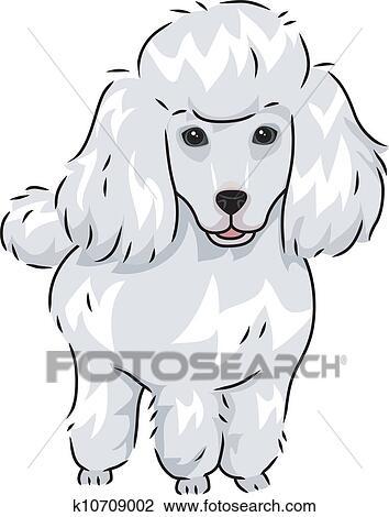 Cute Miniature Poodle Cartoon Vector Clipart - FriendlyStock   Poodle  drawing, Cartoons vector, Cartoon clip art