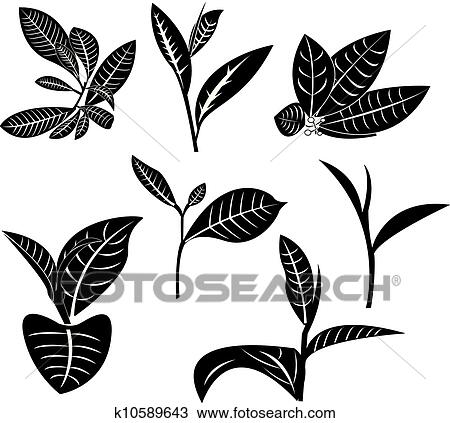 Clipart of tea leaf k10589643 search clip art illustration murals clipart tea leaf fotosearch search clip art illustration murals drawings and thecheapjerseys Image collections
