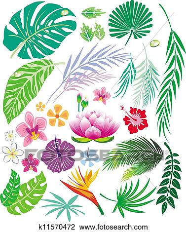 Tropical Leaf And Flowers Clipart K11570472 Fotosearch Seamless vector jungle wallpaper pattern black background. tropical leaf and flowers clipart