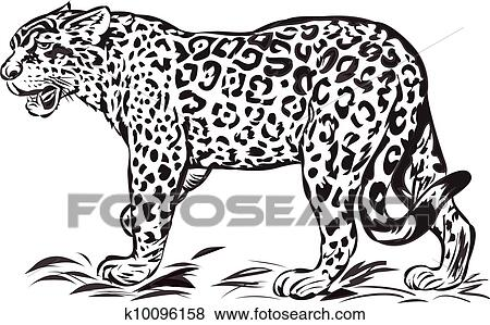 Clip Art Of Wild Jaguar K10096158
